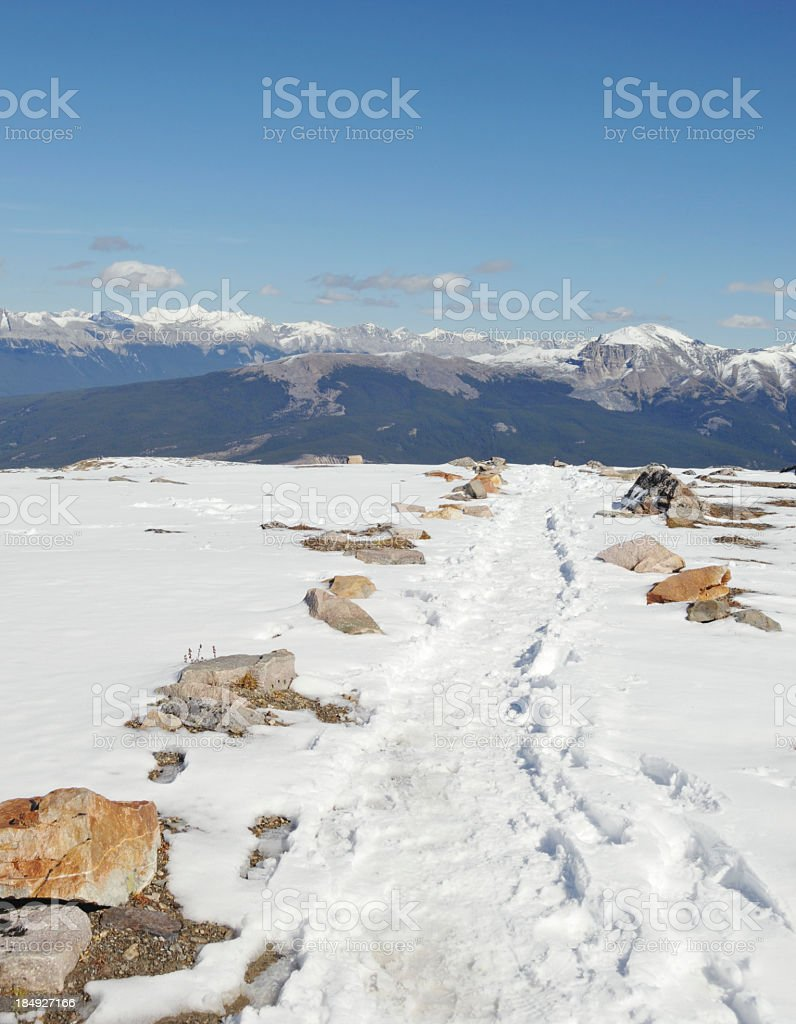 Hiking trail in the snow stock photo
