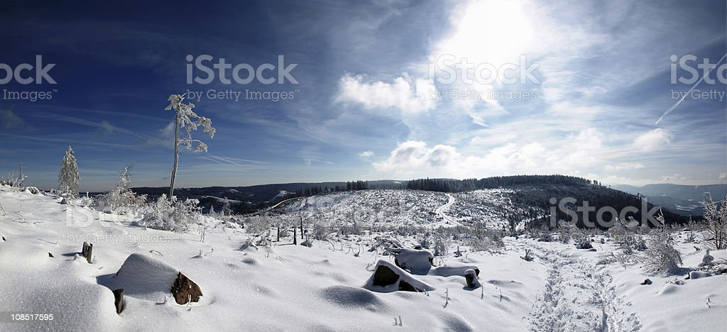 hiking trail in winter royalty-free stock photo