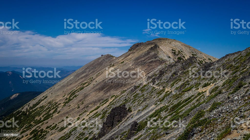 Hiking Trail Near Mt. Rainier royalty-free stock photo