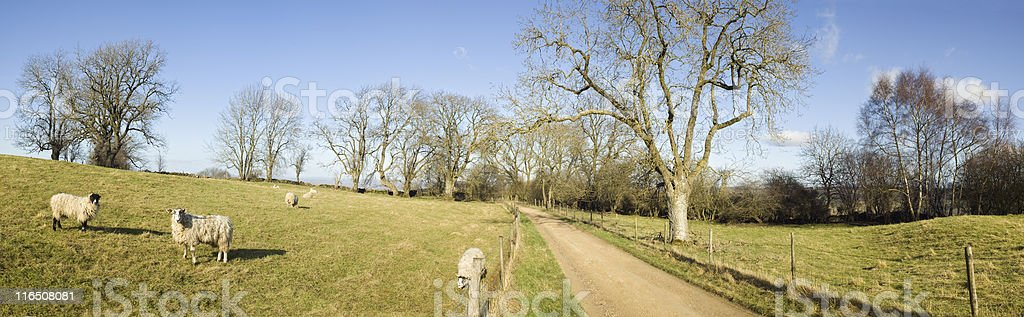 Hiking trail. royalty-free stock photo