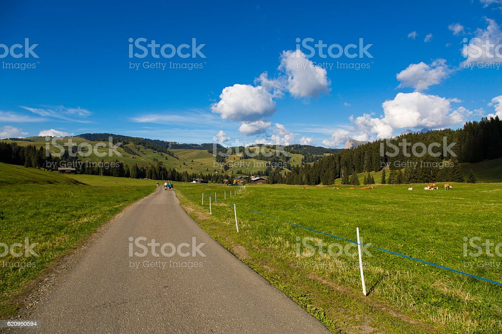 Hiking trail stock photo