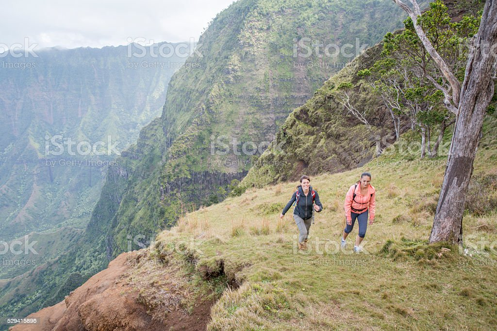 Hiking Up a Mountainside stock photo