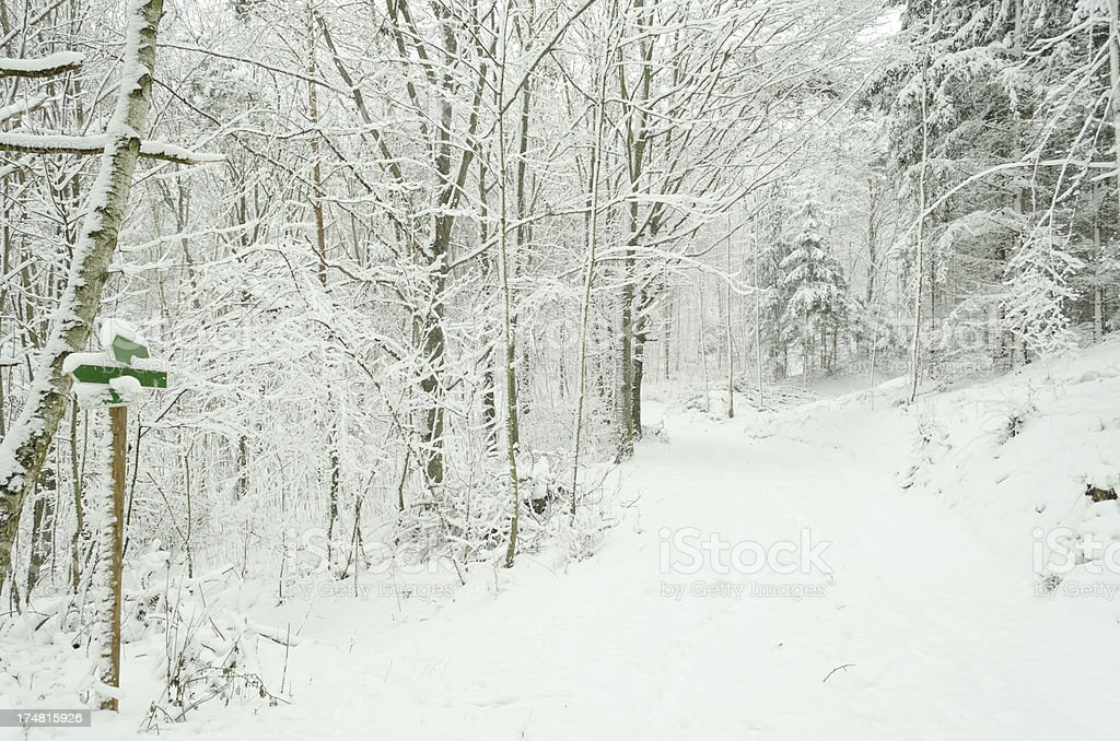 hiking way on a mountain in winter royalty-free stock photo