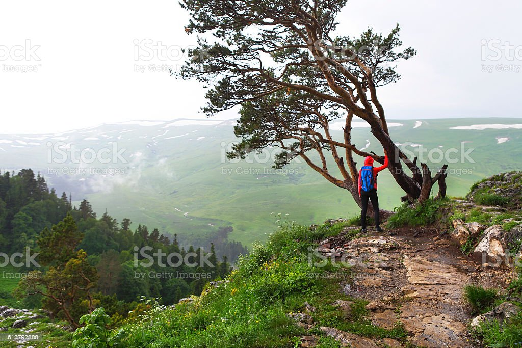 Hiking woman, climber or trail runner in mountains. stock photo