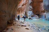 Hiking Zion Narrows
