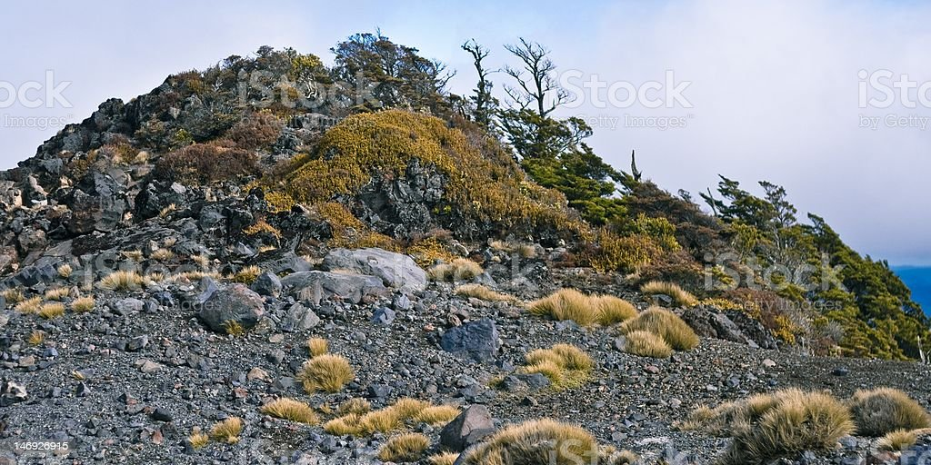 Hill covered with rocks and underwood royalty-free stock photo
