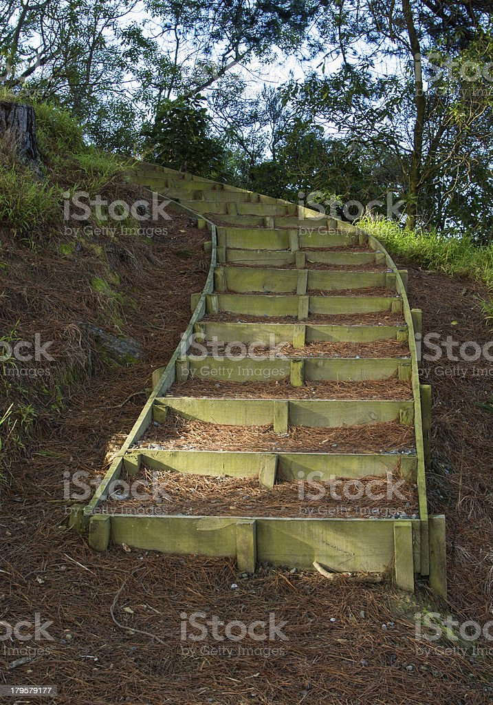 Hill Steps royalty-free stock photo