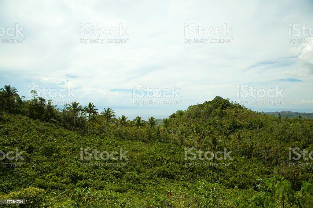 Vue sur la colline photo libre de droits