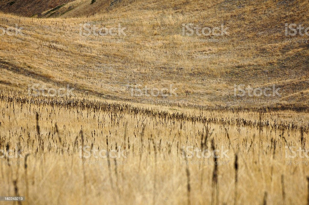hills abstract stock photo