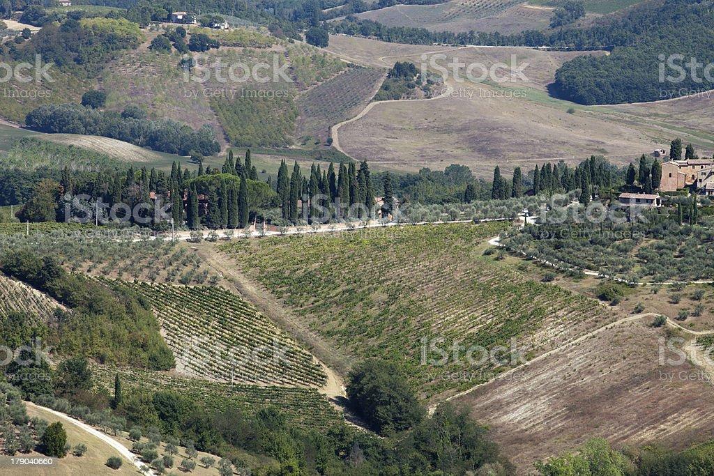 Hills around San Gimignano royalty-free stock photo