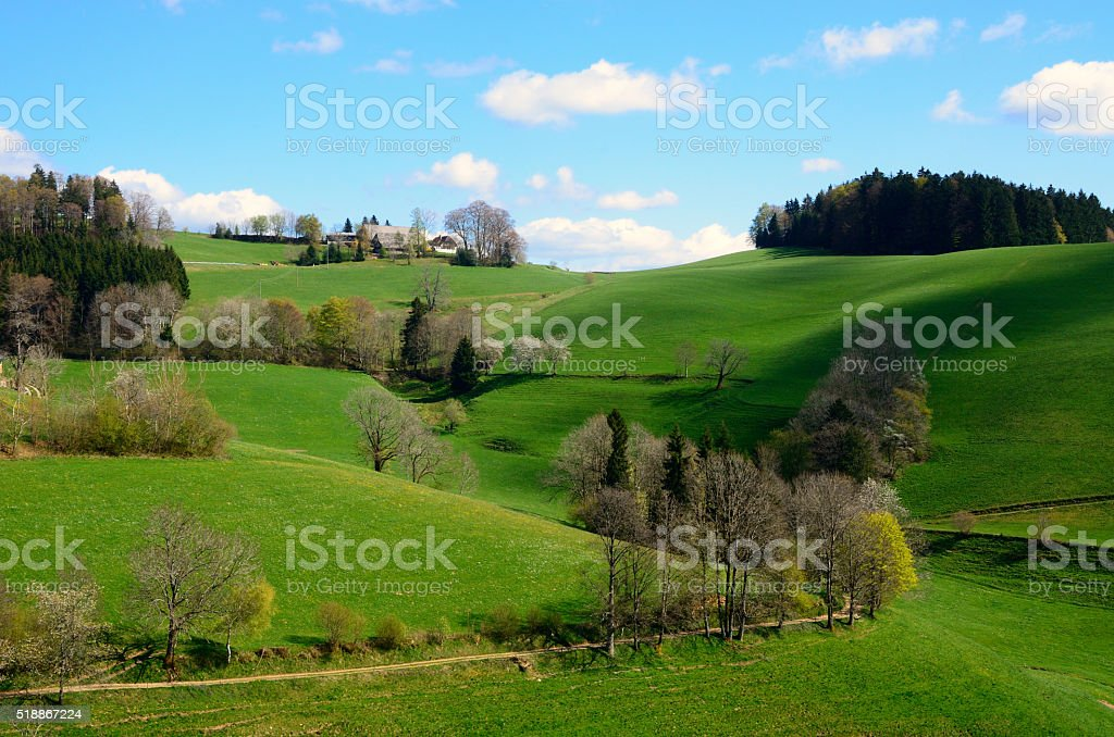 Colinas alrededor de St Peter, Selva Negra, Alemania stock photo