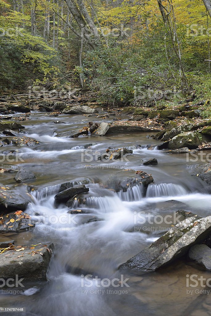 Hills Creek in Monongahela National Forest royalty-free stock photo