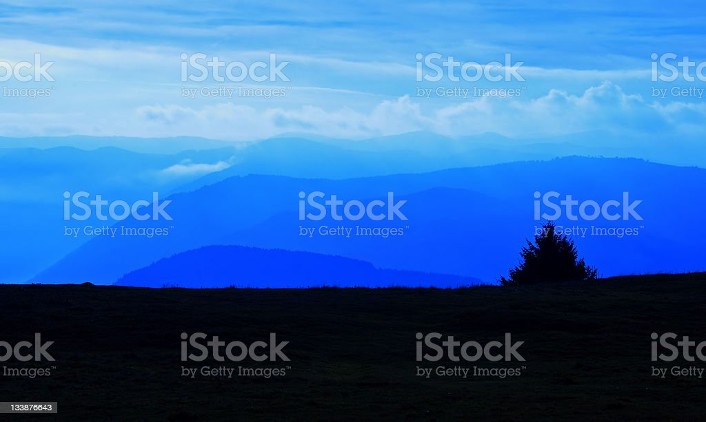 Hills in a blue sunset with tree silhouette royalty-free stock photo