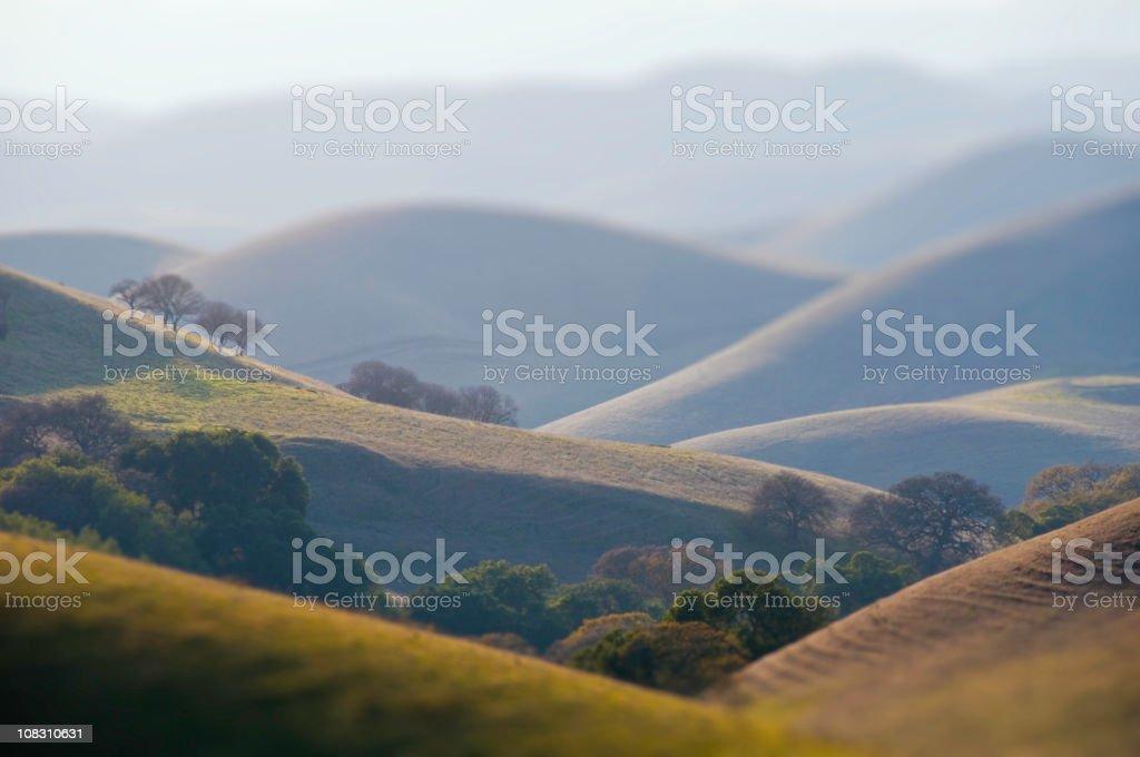 Hills in California (Tilt Shift) royalty-free stock photo