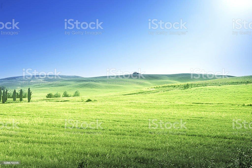 hills in sunny day Tuscany, Italy stock photo