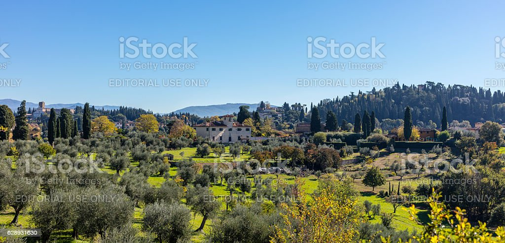 Hills near Florence with olive trees and villas stock photo