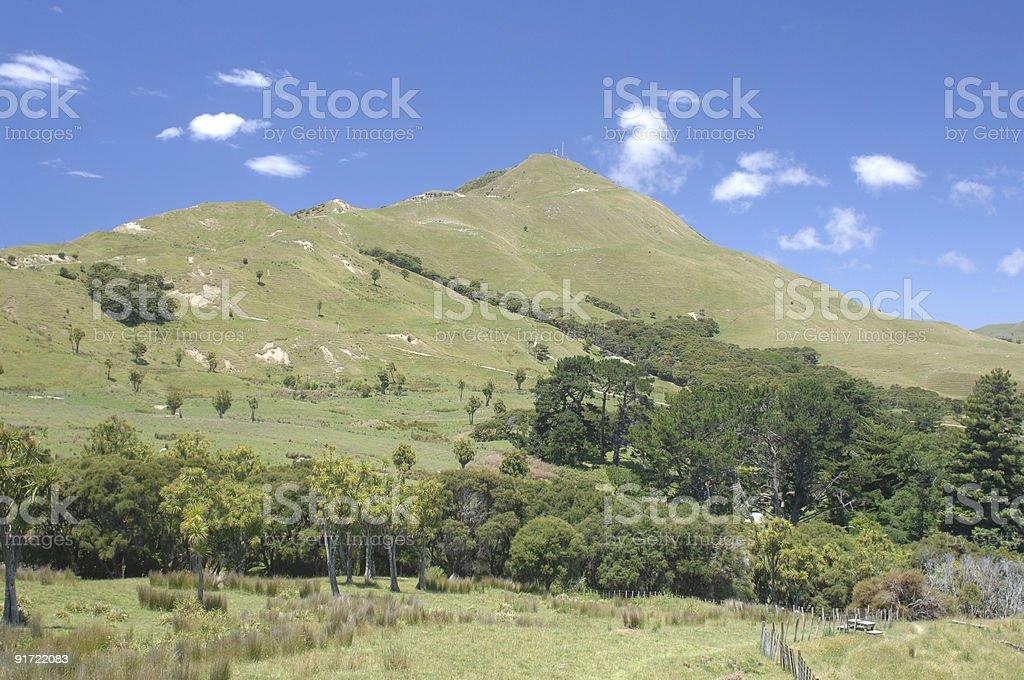 Hills, nr Tolaga Bay, New Zealand stock photo