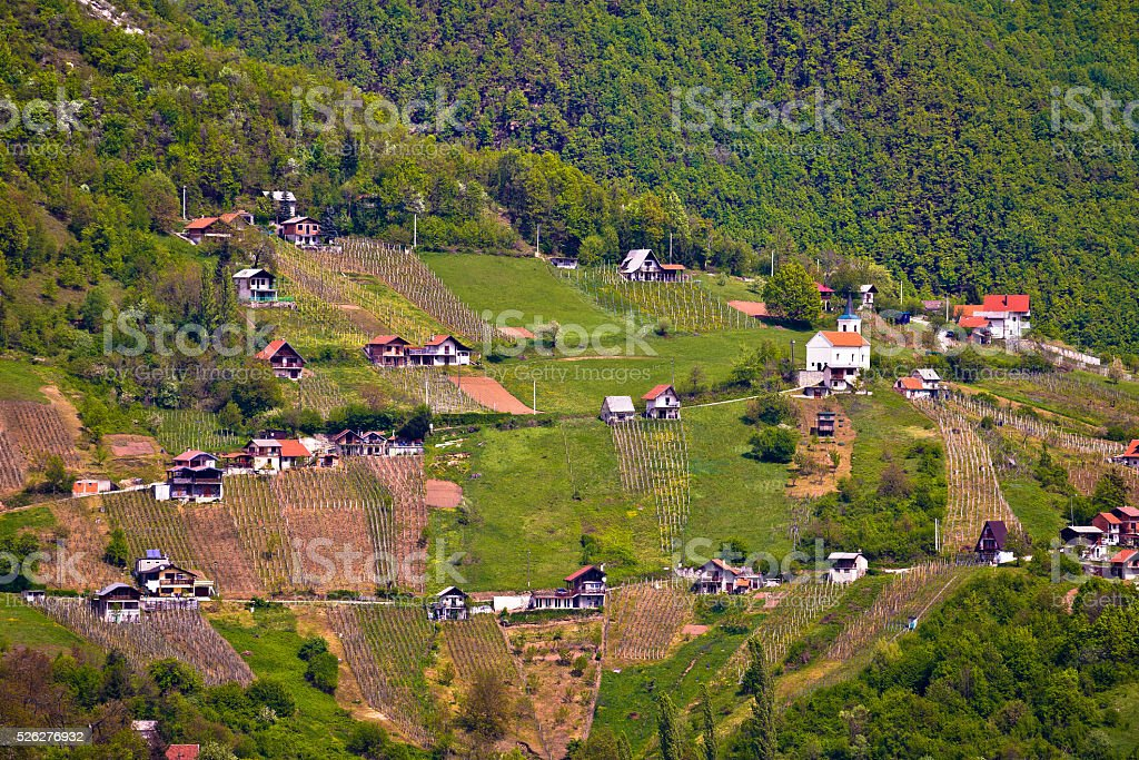 Hills of Plesivica vineyards and cottages stock photo