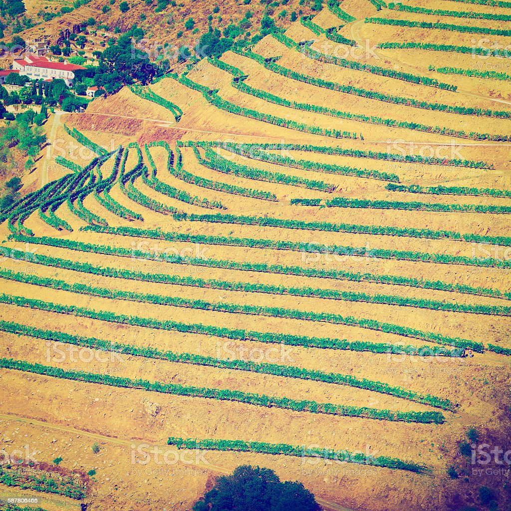 Hills of Portugal stock photo