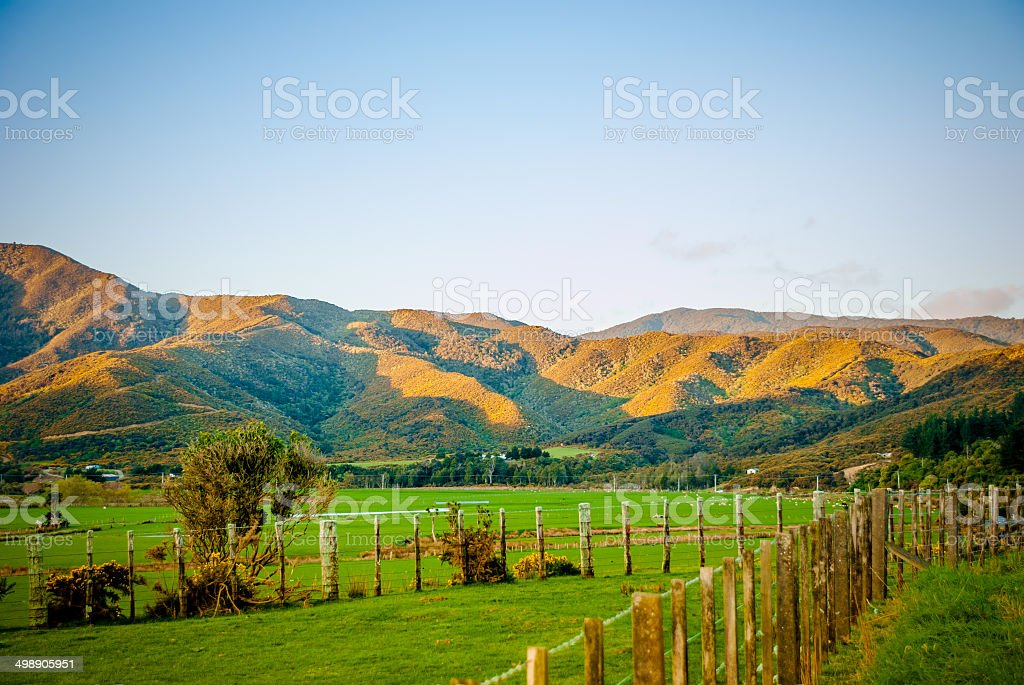 Hills of the North Island stock photo