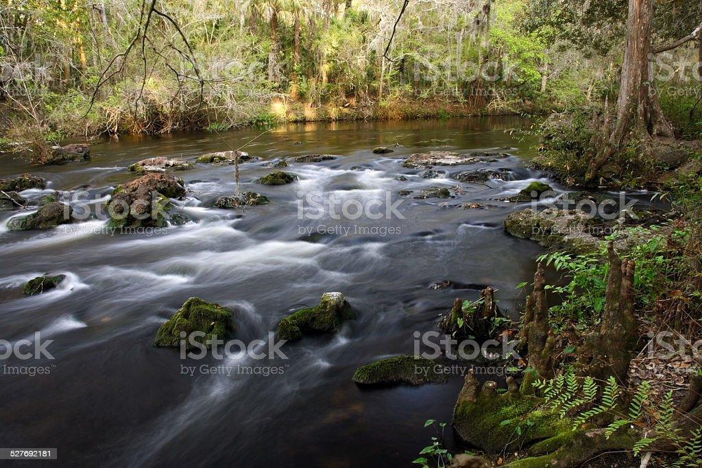Hillsborough River stock photo