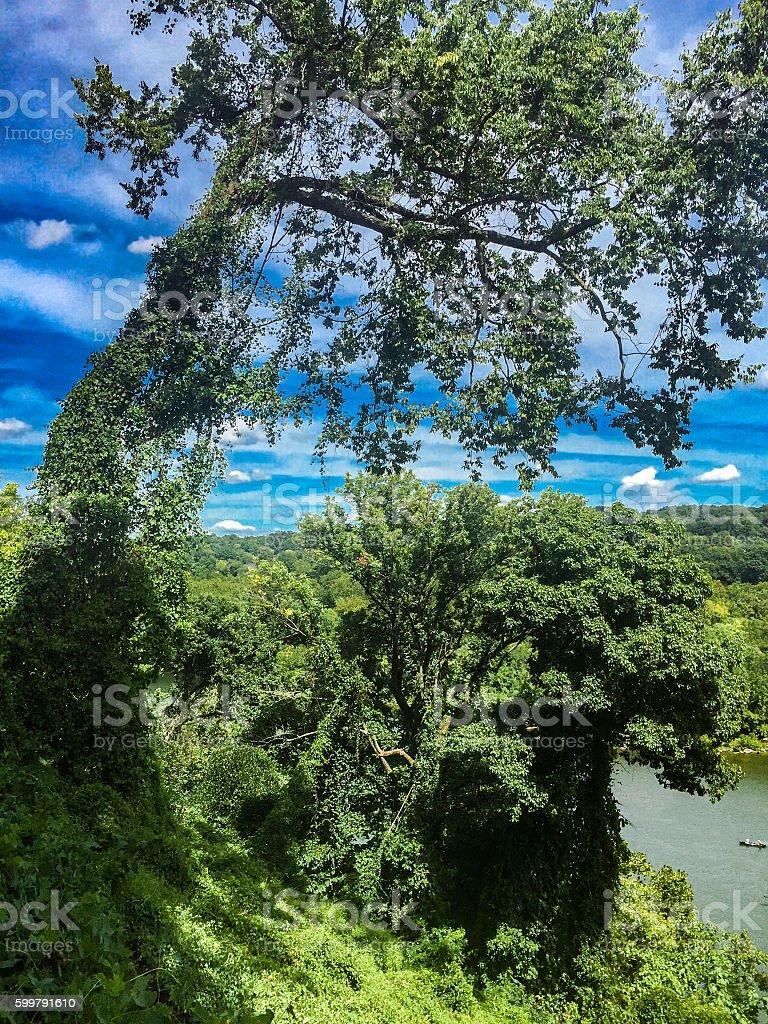 hillside view of potomac river stock photo