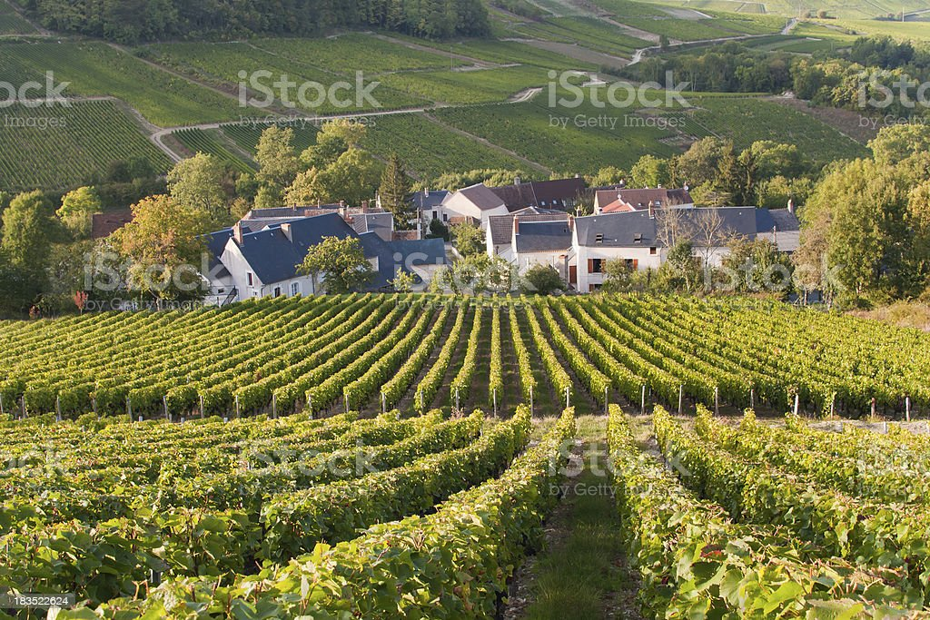 Hillside Vineyards Surround Small Village in France stock photo