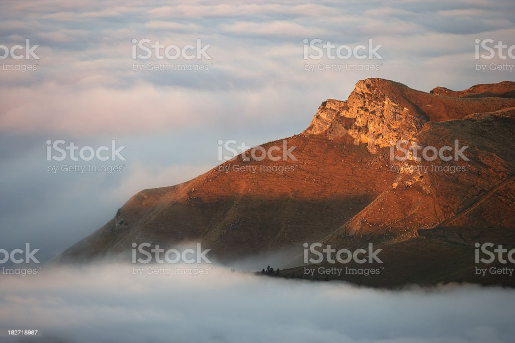 Hilltop at dawn with a herd of sheep grazing. stock photo