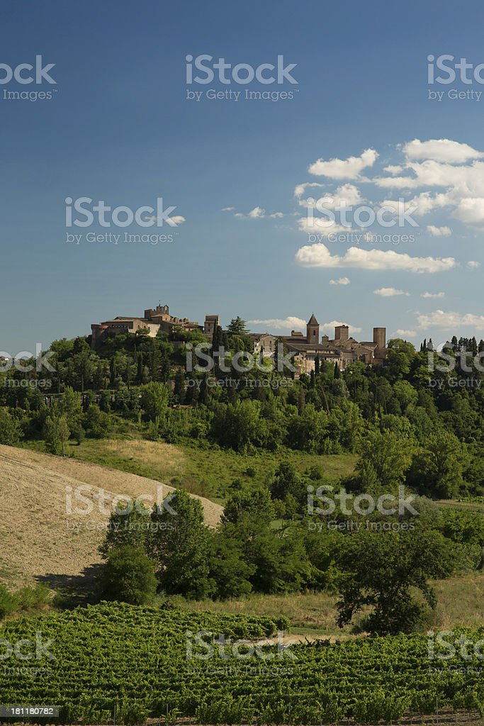 Hill-top Tuscan town and vineyards royalty-free stock photo