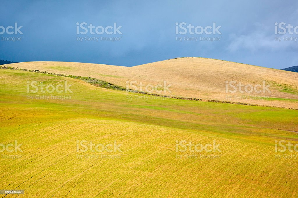 Hilly field stock photo
