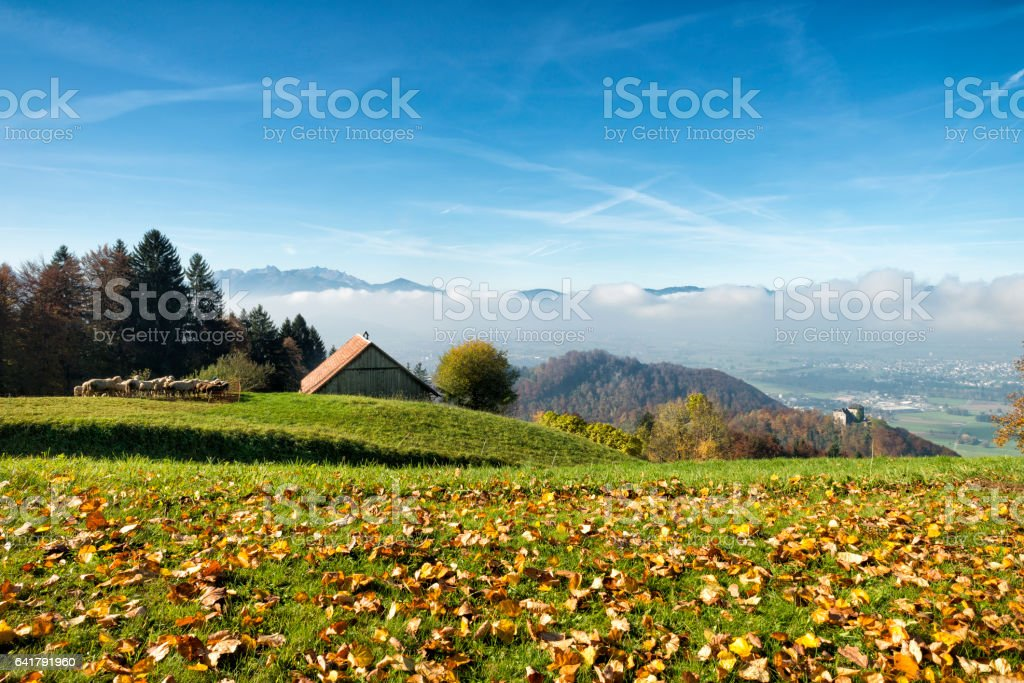 hilly landscape with meadow, forest, barn and sheep stock photo