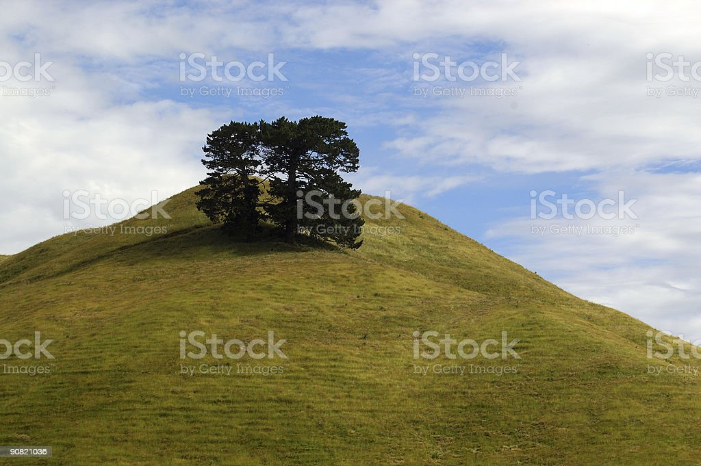hilly trees stock photo