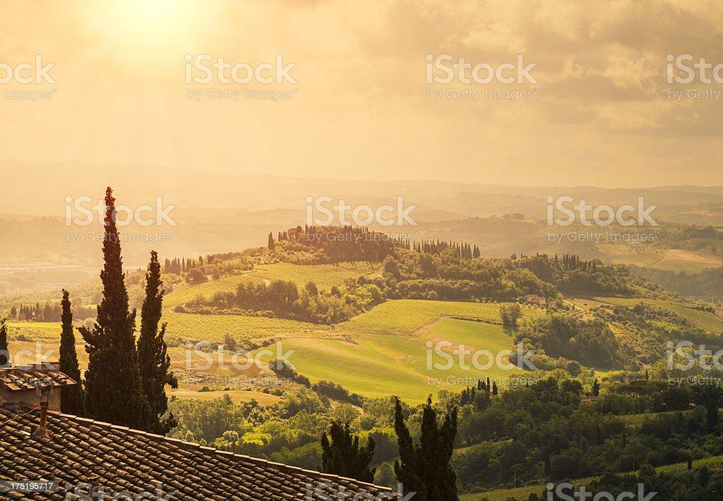 Hilly Tuscan landscape near Pienza. stock photo