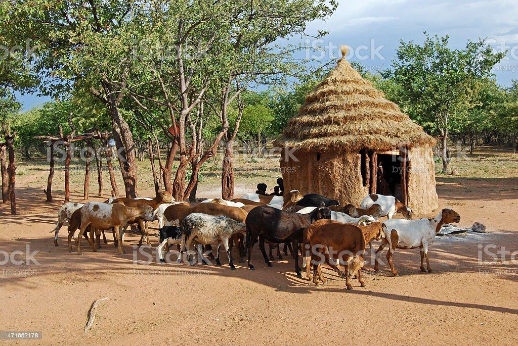 Himba village near the Etosha National Park in Namibia stock photo