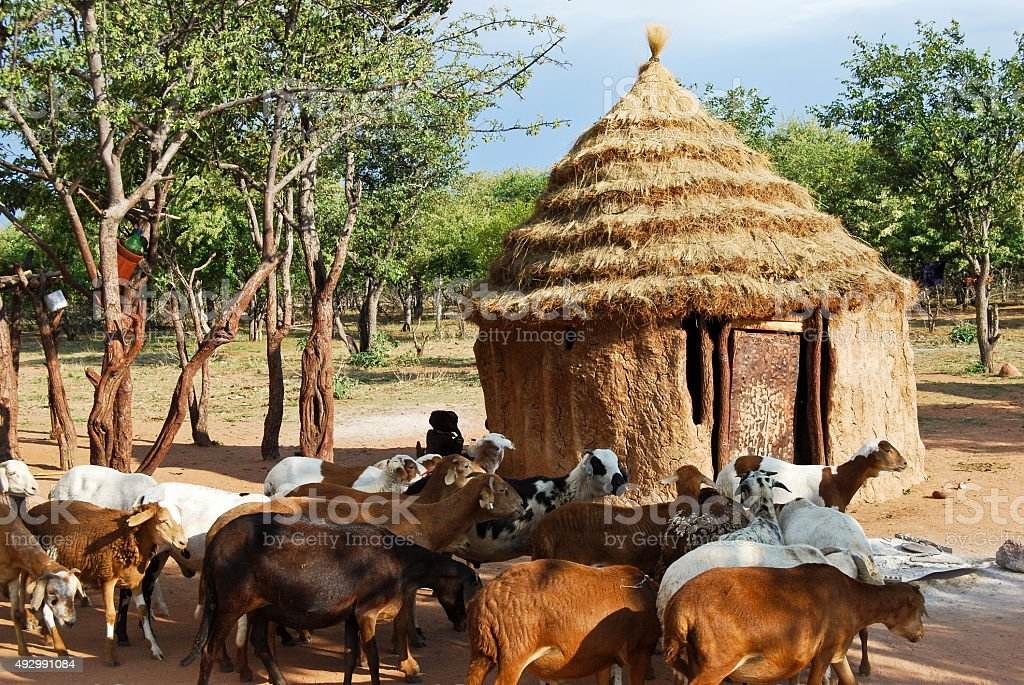Himba village with traditional huts in Namibia, Africa stock photo