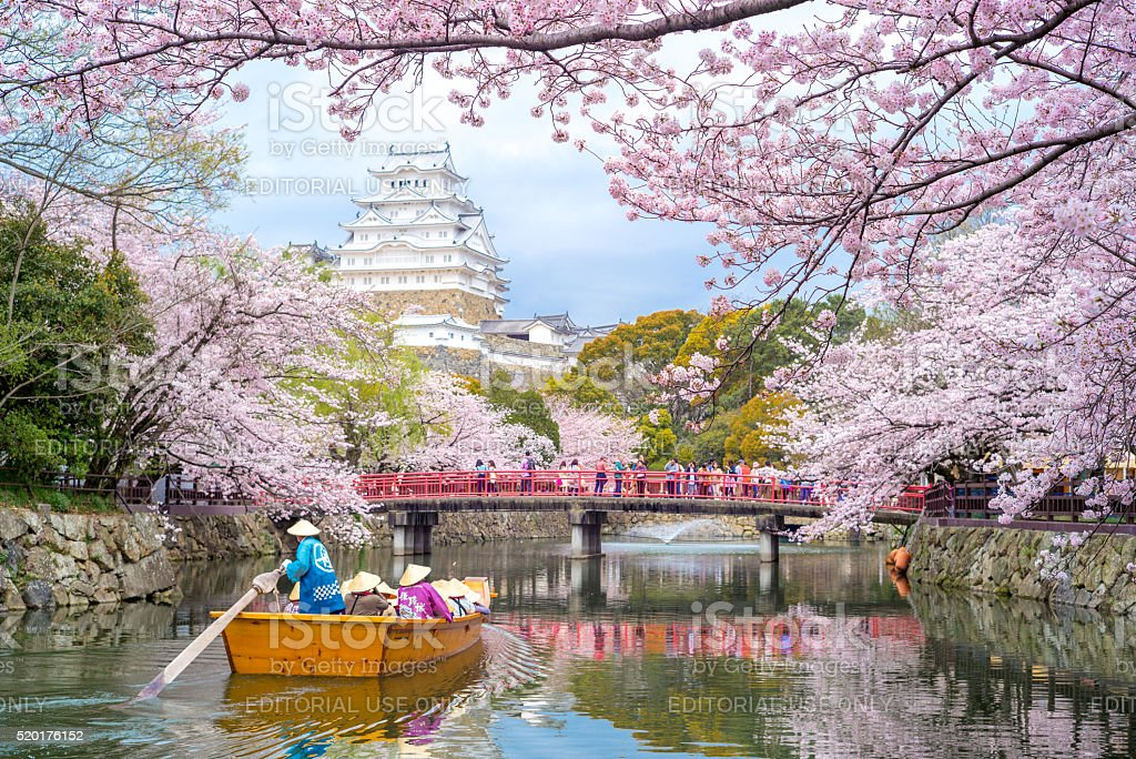Himeji Castle in Hyogo, Japan stock photo