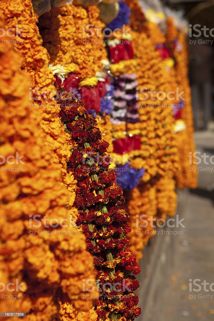 Hindu flowers royalty-free stock photo