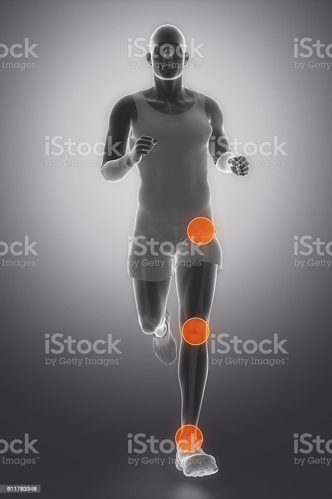 Hip, ankle and knee joint anatomy stock photo