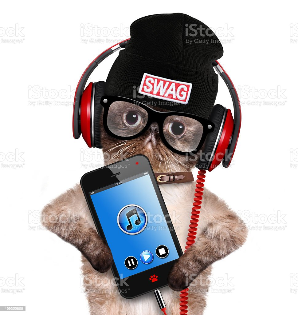 Hip hop cat listening to some beats on red headphones stock photo