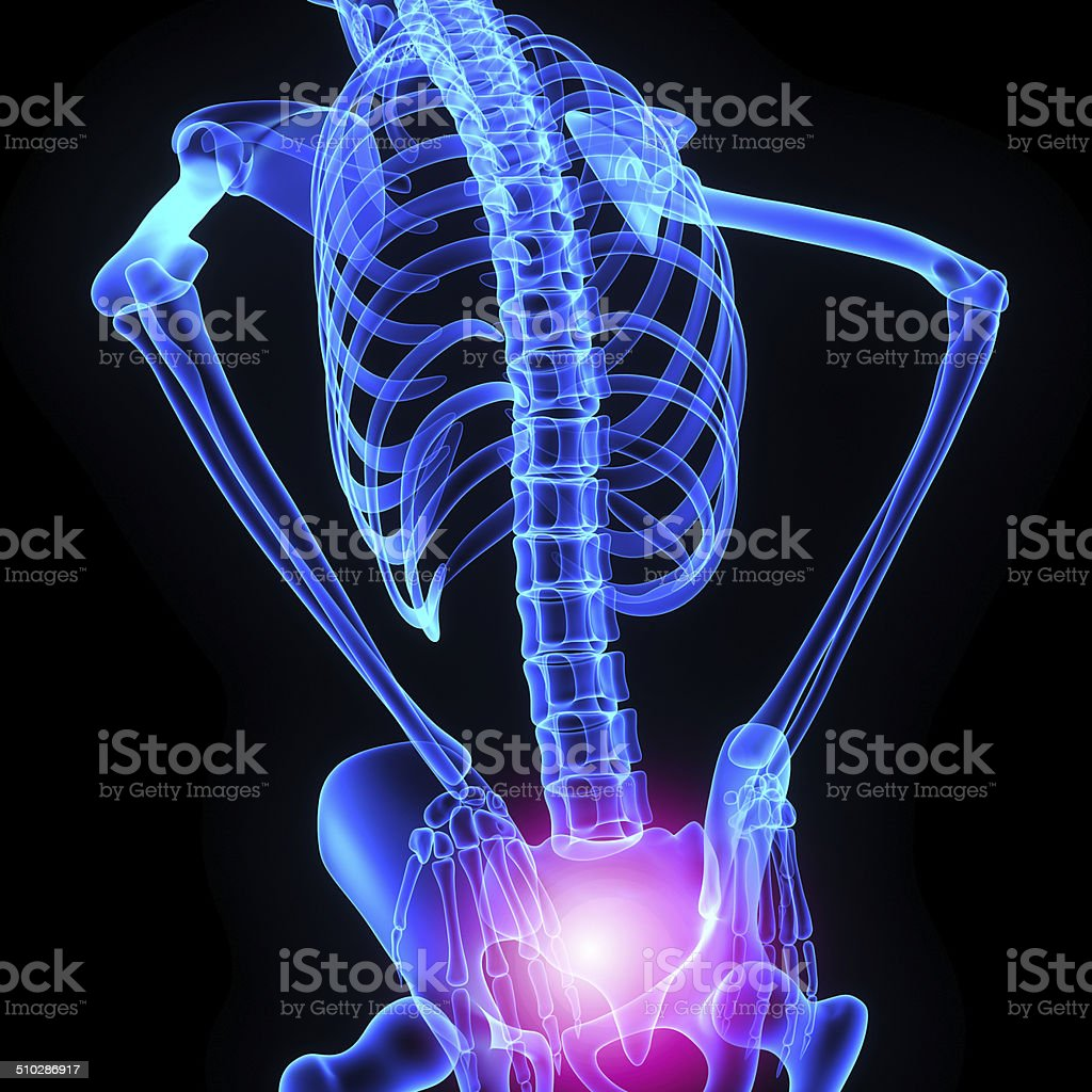 Hip joint stock photo