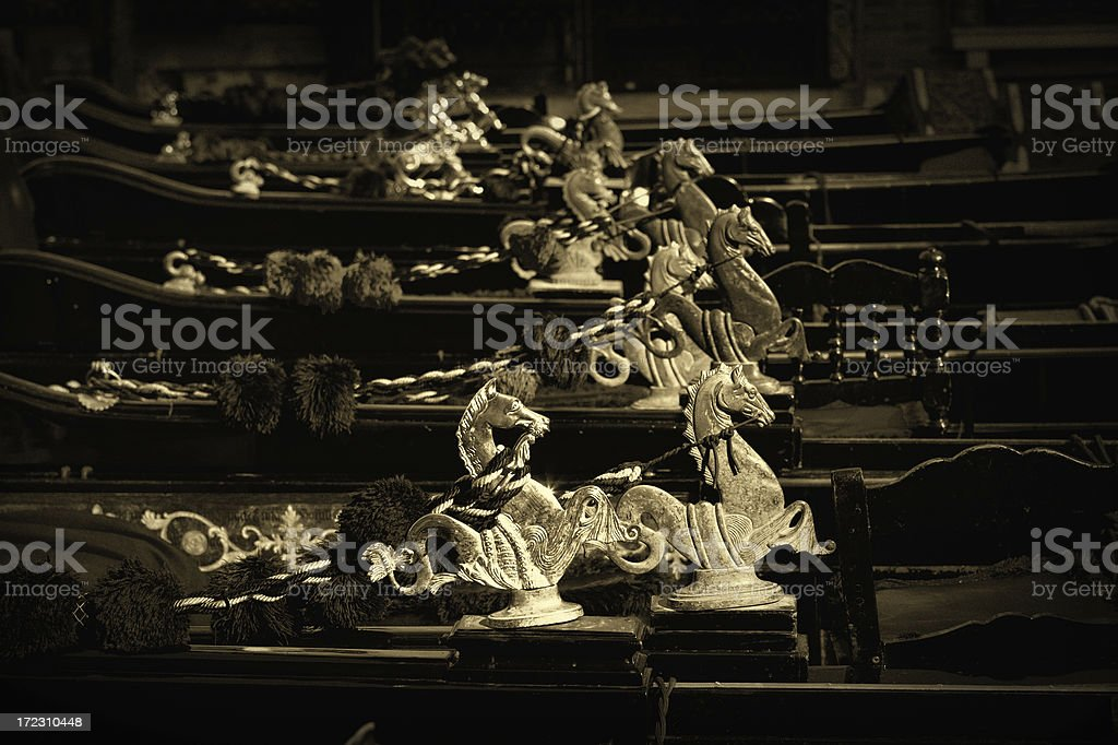 hippocampus racing royalty-free stock photo