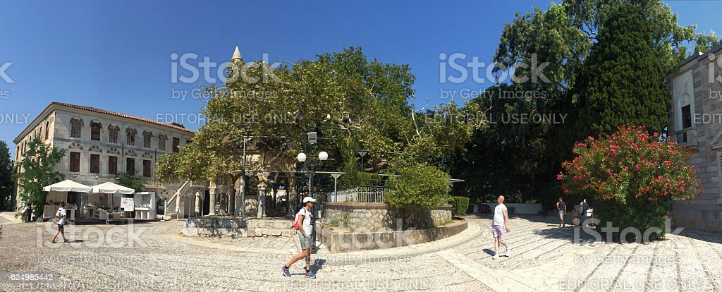 Hippocrates Plane tree that is in Kos island of Greece. stock photo