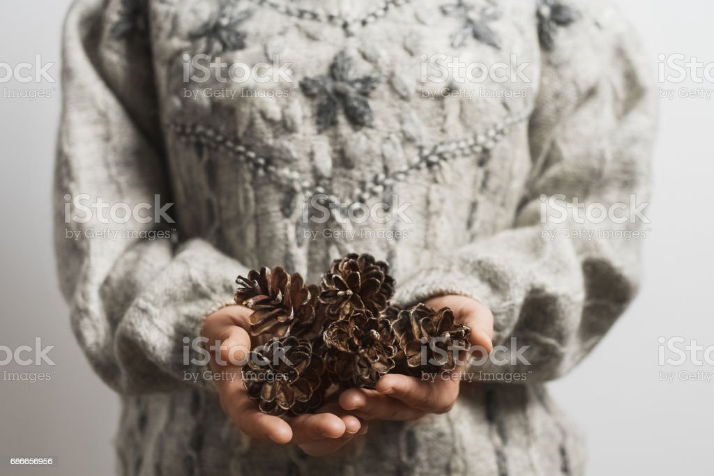 Hipster looking person wearing sweater holds pine cones stock photo