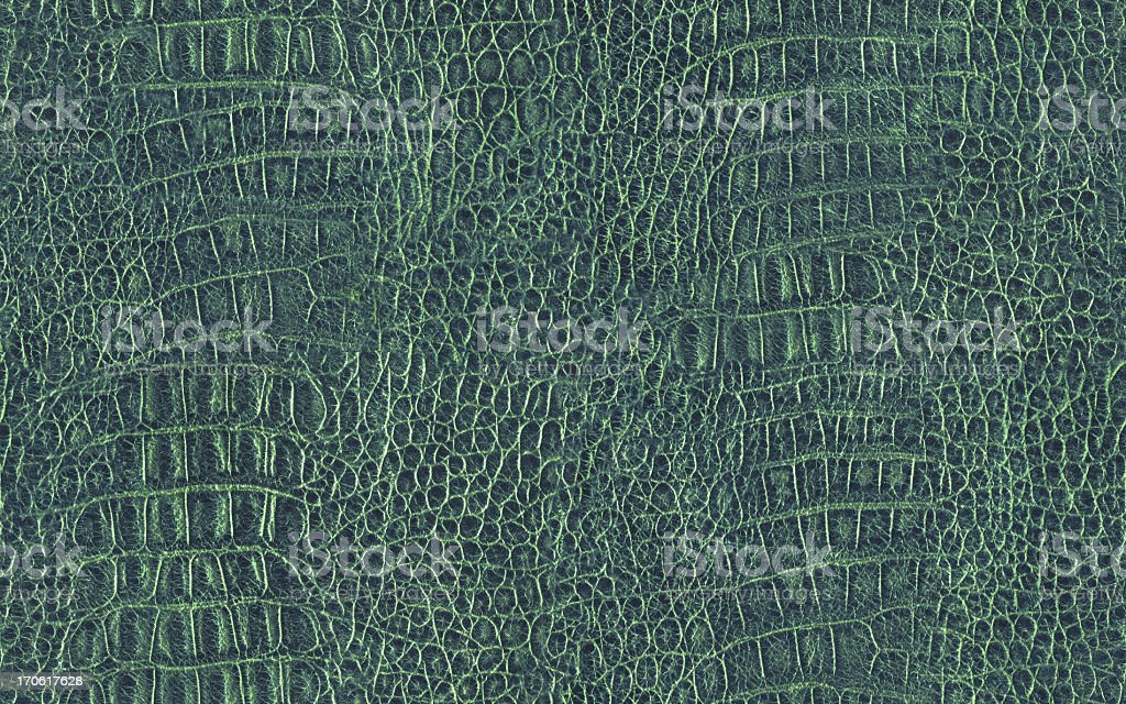 Hi-Res Alligator Skin Seamless Green Texture Tile stock photo