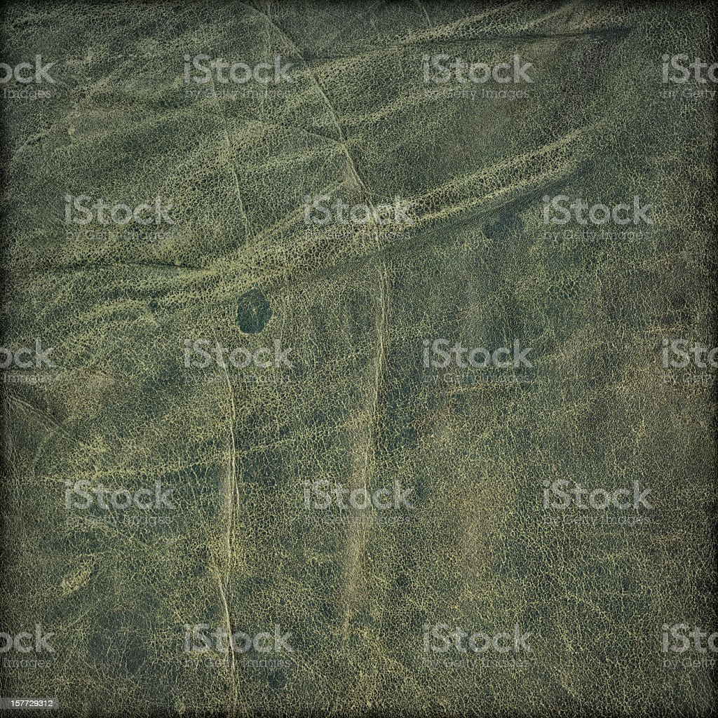 Hi-Res Animal Skin - Antique Green Veal Leather Grunge Texture royalty-free stock photo