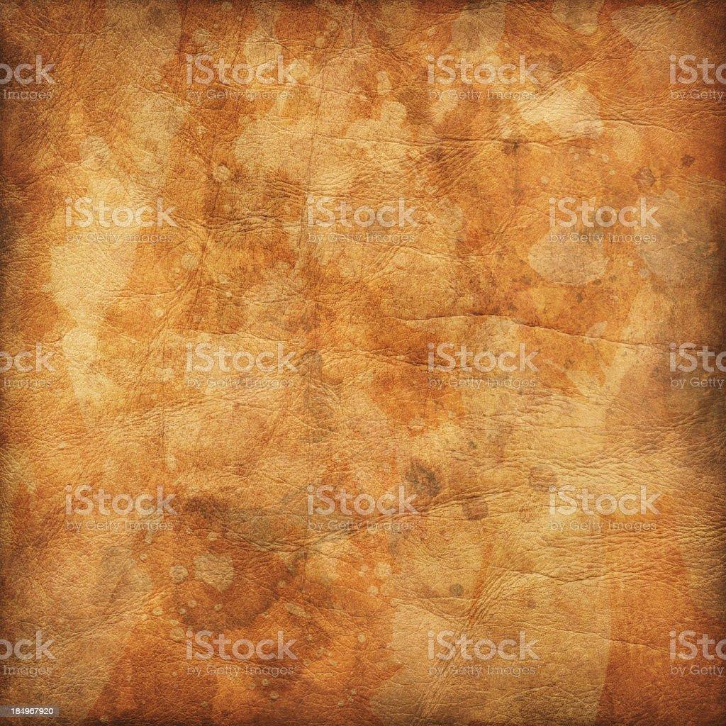 Hi-Res Animal Skin Parchment Wizened Mottled Vignette Grunge Texture stock photo