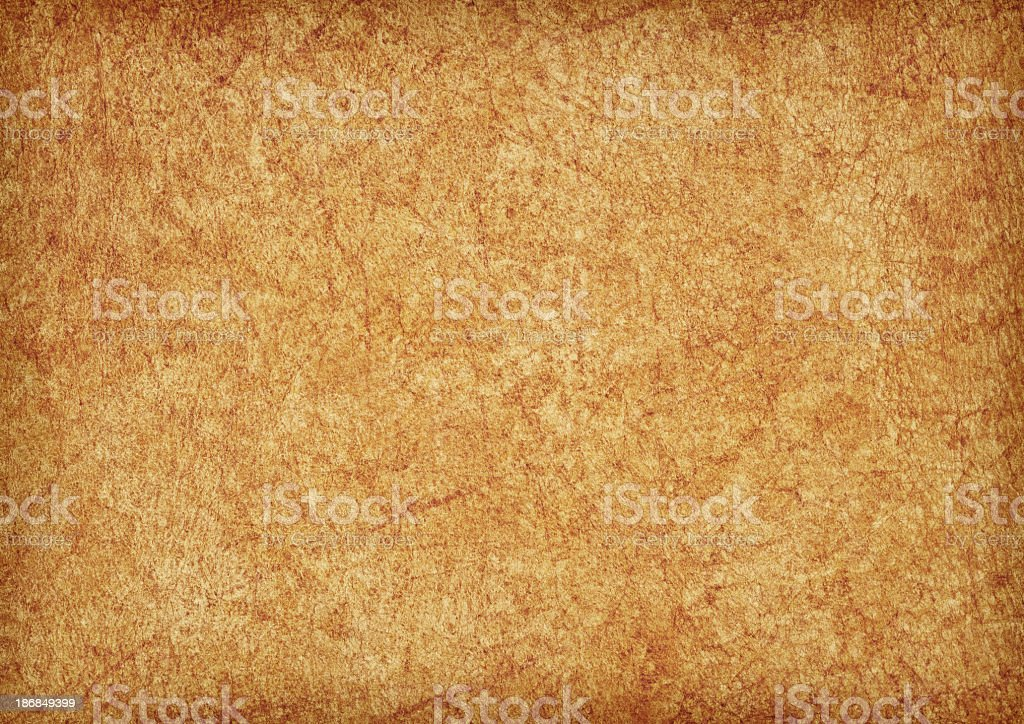 Hi-Res Animal Skin Parchment Wizened Mottled Vignette Grunge Texture royalty-free stock photo