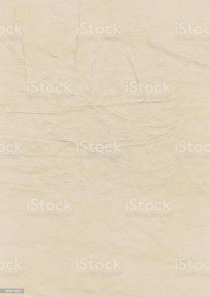 Hi-Res Antique Animal Skin Parchment Grunge Texture stock photo
