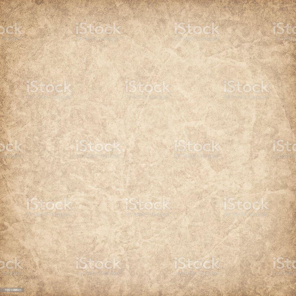 Hi-Res Antique Animal Skin Parchment Vignette Grunge Texture stock photo