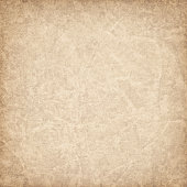 Hi-Res Antique Animal Skin Parchment Vignette Grunge Texture